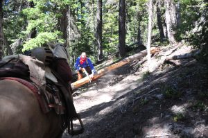 trail rider obstacles