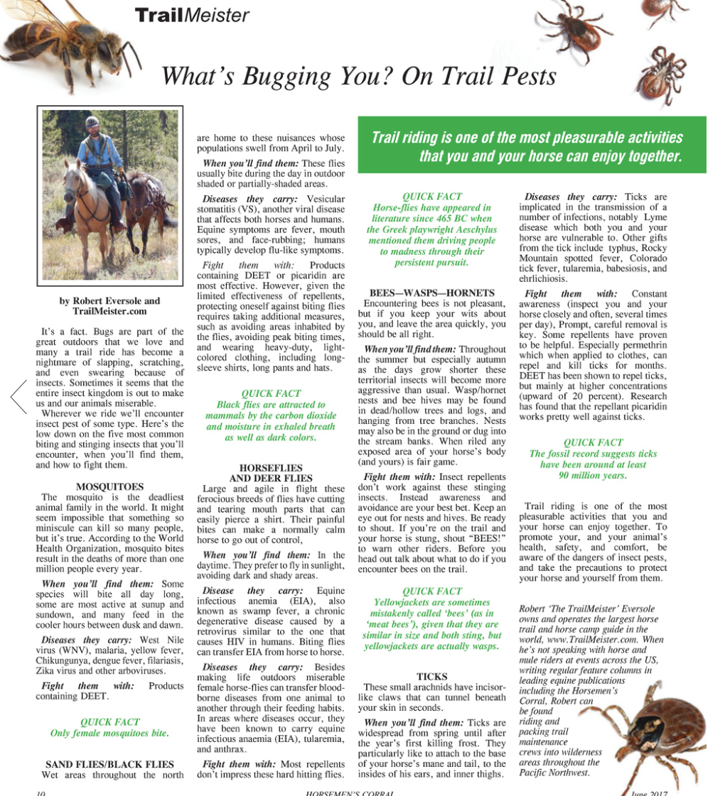 What's Bugging You? On Trail Pests - TrailMeister