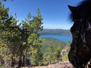 Oregon mule camping - Paulina