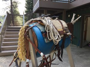 mule packing